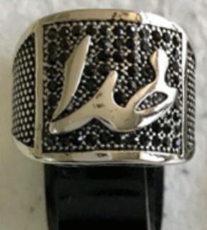 Silver Ring God Model-MainImage